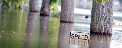 flooded trees with speed limit sign submerged